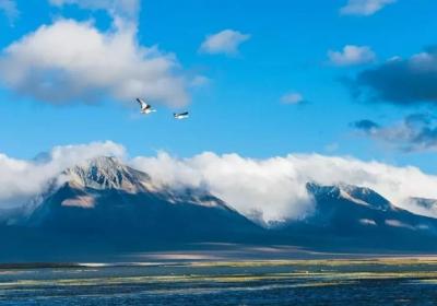 知道这16件事,就可以放心的去西藏了